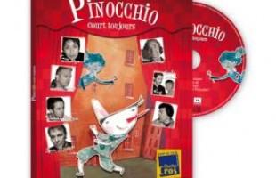 Le Pinocchio de Romain et Mathieu