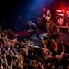 Les Fatals Picards : putain de rimes pour mutins du rock