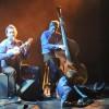 Les Polis Sont Acoustiques, chanson française complètement à l'ouest