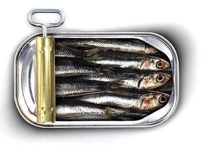 les sardines c est un extra nosenchanteurs. Black Bedroom Furniture Sets. Home Design Ideas