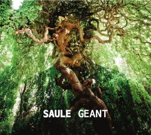 pochette-saule-geant-417bb