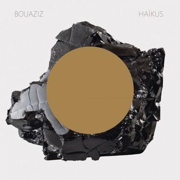 pascal-bouaziz-haikus_2916864