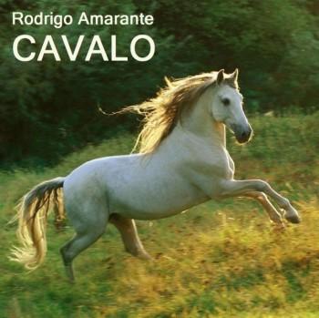 Amarante Rodrigo 2014 Cavalo