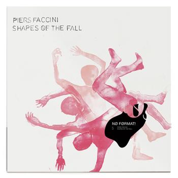 FACCINI 2021 Shapes of the fall