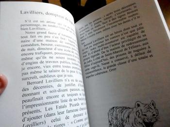 Un livre richement illustré par Lily Luca