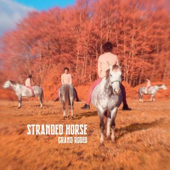 Stranded horse 2021 Grand Rodéo
